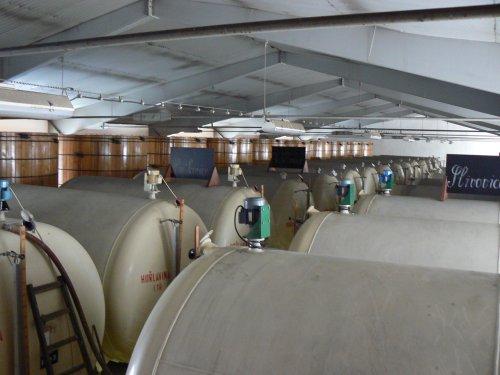 Obří hala s obrovskými kovovými tanky a dřevěnými nádobami na skladování slivovice.